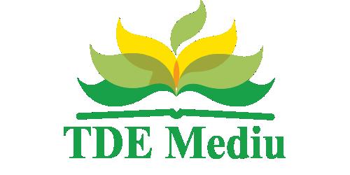 TDE Mediu